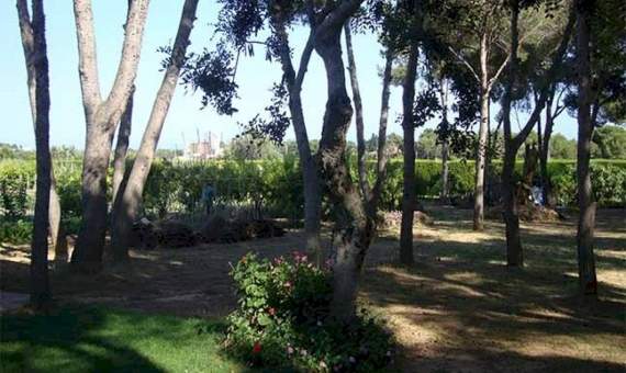 Country house with 1.5 Ha for sale in Vilanova i la Geltru   9047-17-570x340-jpg