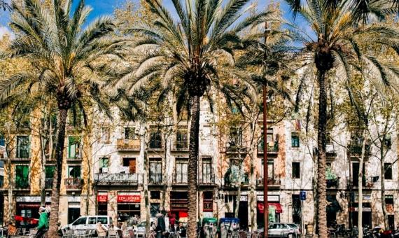 Building for sale located in the district of El Raval   el-raval-1-1-570x340-jpg